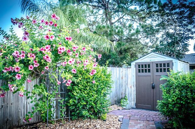 146 What Do You Need to Consider Before Building a Garden Shed?