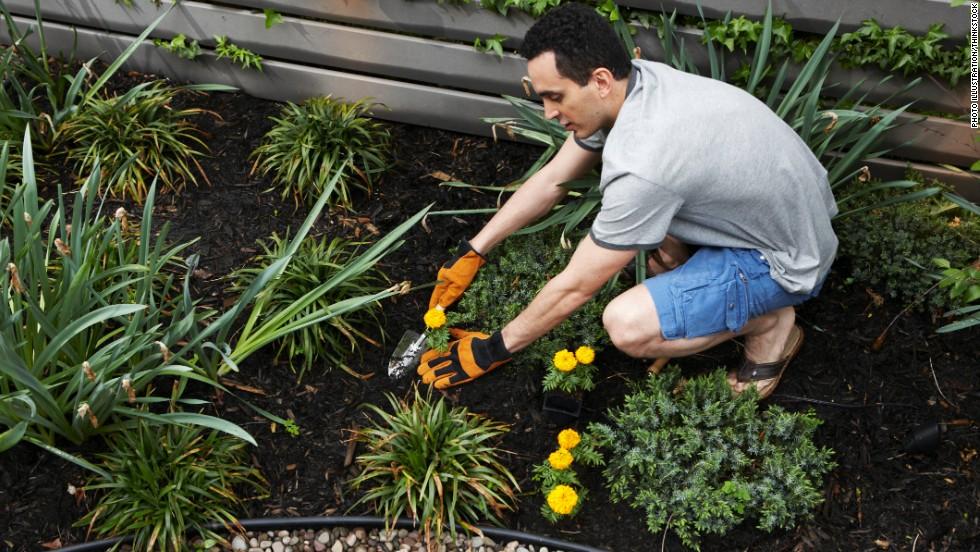 130403115851-spring-clean-health-garden-horizontal-large-gallery